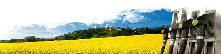 O Químico está presente na produção de biocombustíveis.
